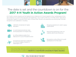 Will you be one of the next 4-H Youth in Action Award Winners?