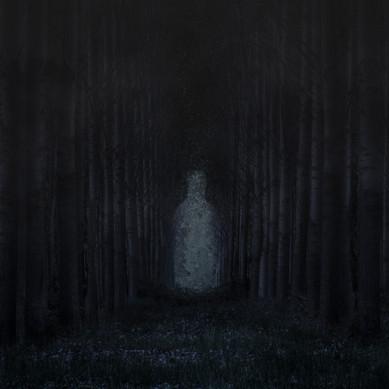 01.Forest.jpg