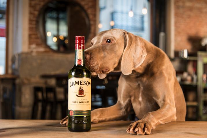 Jameson-44-Editar-2.jpg