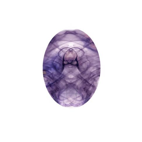 Bullikor egg