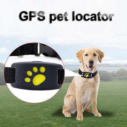 Z8-A GPS Pet Locator