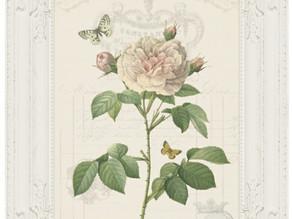 FREE Pink Rose vintage style printable