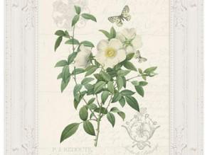 FREE White Rose vintage style printable