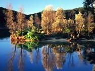 Nelsons Lagoon
