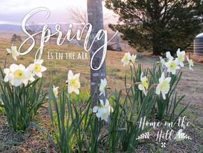 Spring Returns To The Farm Garden