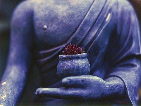 Yoga Philosophy, Pandemic Style