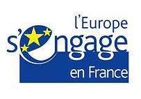 FSE logo.jpg