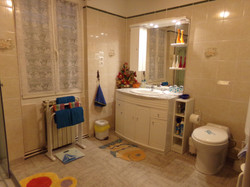 Salle d'eau Chambre LA SALAMANDRE.JPG