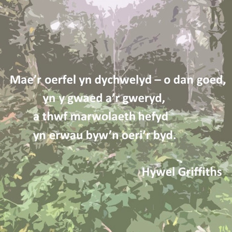 Diwrnod Barddoniaeth Cenedlaethol: Gŵyl Insta-gerddi'r Stamp - Hywel Griffiths
