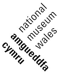 Galwad Agored: Springboard - Amgueddfa Cymru