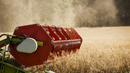 The Increasing Use of the Herbicide, Glyphosate: How Safe are Safe Exposure Limits?