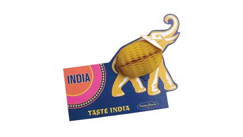TASTE INDIA.png