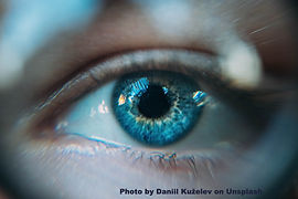 daniil-kuzelev-327645-unsplash_edited.jp