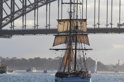 Tall Ships, Sydney Harbour