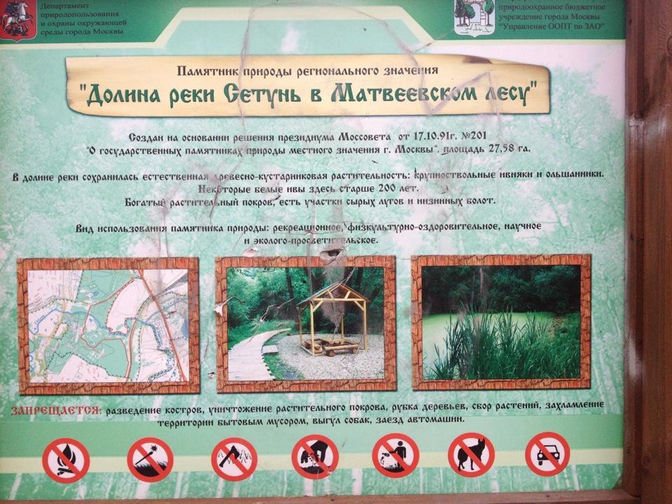 Матвеевский лес