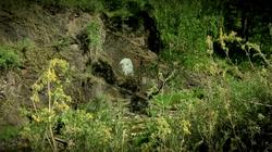 Портрет Ленина на скале