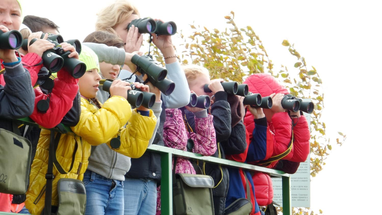 Наблюдатели за журавлями