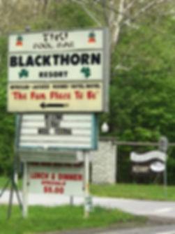 blackthorn-resort-catskillist.jpg