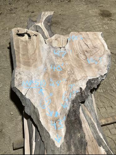 "Maple 510 (1.625""x28-48""x43-65"") flattened"