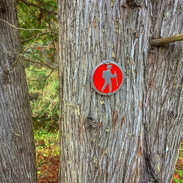 This way. Finally got our hiking trails