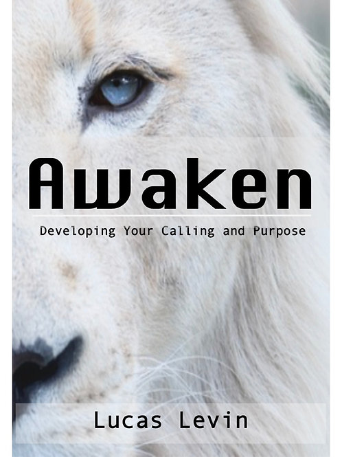Awaken The Leader Within You CD Series