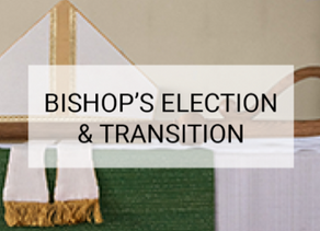 Being part of the process in choosing our next Bishop