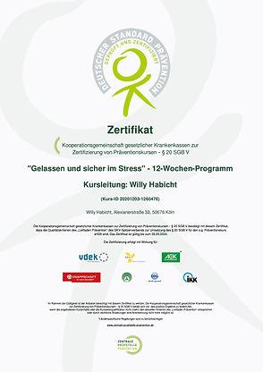 GuSiS Zertifikat 12 Wochen ZPP 2021.jpg