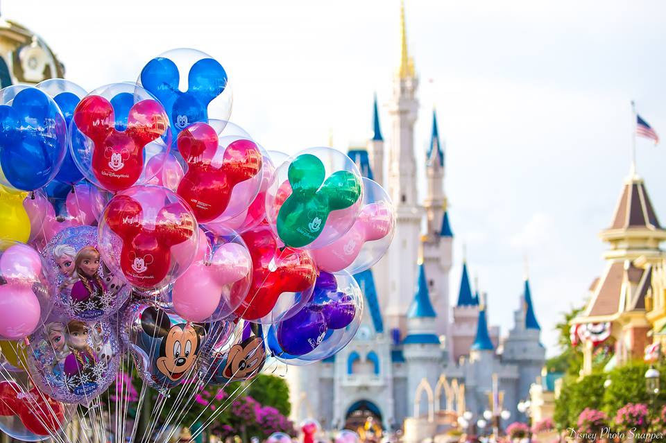 Consultation Appointment-Disney Trip
