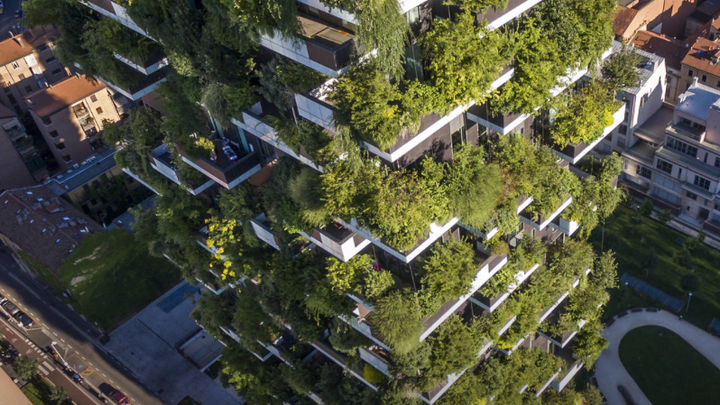 More Buildings Are Going Green. Literally.