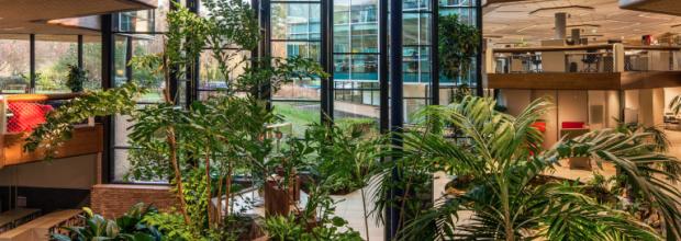 DGBC publiceert vergelijking 'BREEAM-NL In-Use en WELL Building Standard'