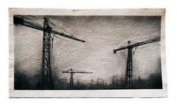 Cranes - Three