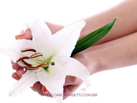 Como a Terapia Floral funciona?