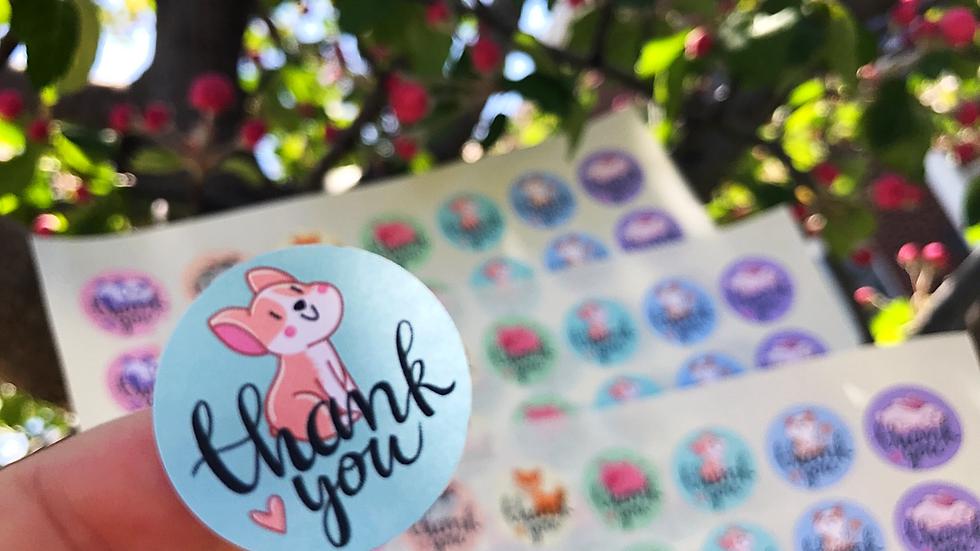 Mini Thank You Animal Stickers (63)