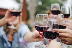 Brindisi di vino