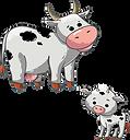 cow-3316001__340.webp