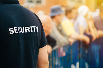 Member of security guard team working on