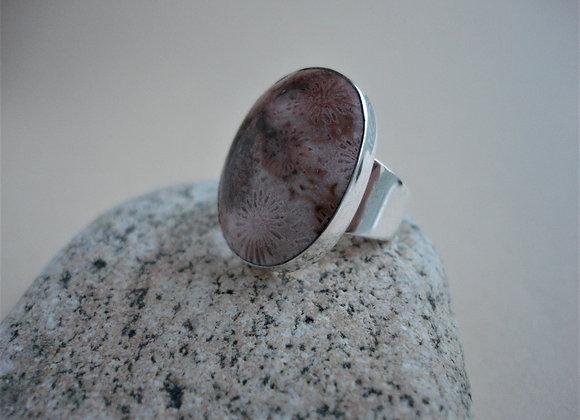 Ring versteend koraal, dichte scheen