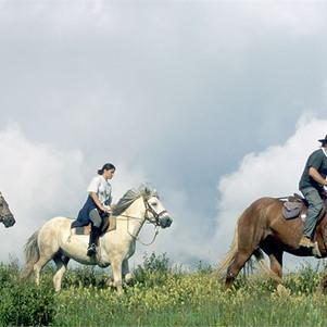 Ballade à cheval Valmorel.