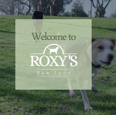 Welcome to Roxy's Raw Food