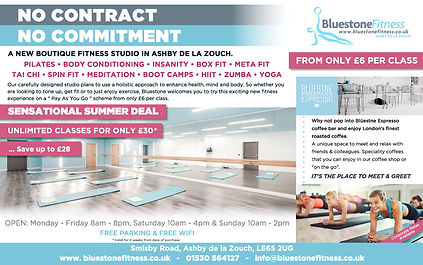 Bluestone Ad (LARGER STUDIO PIC outlined