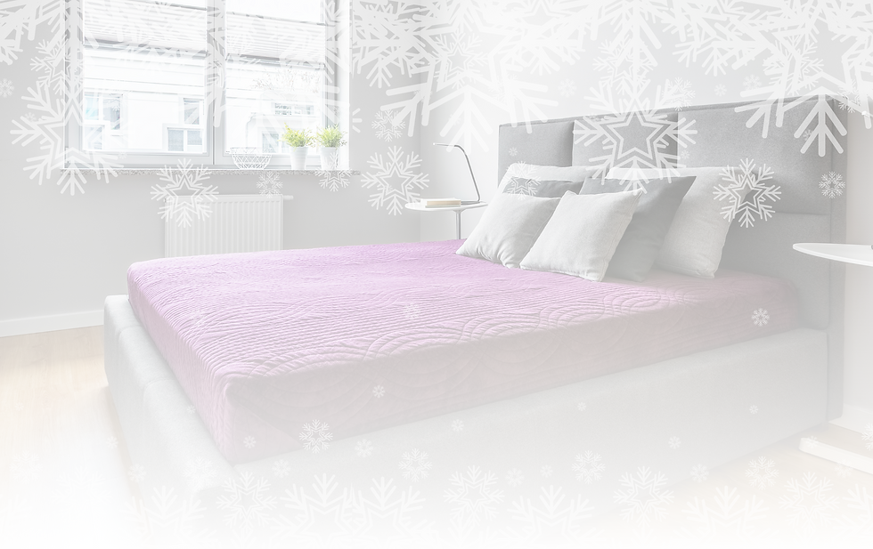 Forgan bed co - winter sale.png
