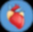 Cardiac CPD.png