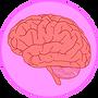 Brain pic.png