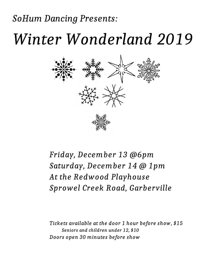 winter wonderland 2019 poster.jpg