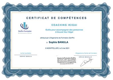 certificat-de-competences-coaching-ikiga