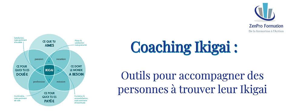 coaching Ikigai ZenPro.jpeg