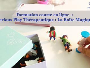 NOUVELLE formation / Serious Play Thérapeutique / 50 euros