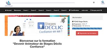 accueil-foad-stage-declic.png