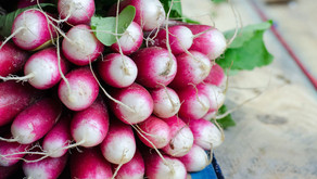 Radishes with Melted Butter