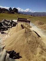 Cosecha de la Quinoa (zarandeo)